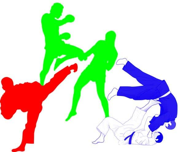 Salles d'arts martiaux
